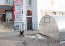 Сауна «Оазис» зал 2 фото
