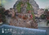 Сауна Дом-2 фотогалерея, телефон сауны 8 (473) 259-21-52