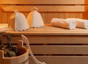 Сравнительная характеристика сауны и русской бани
